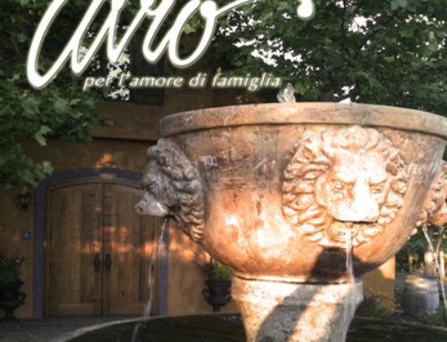 Avio Vineyards